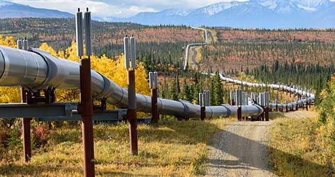 Entdecken Sie die Bestandteile Ihres Erdgas-Preises.